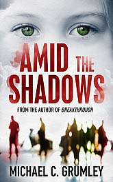 Amid7 Book Cover