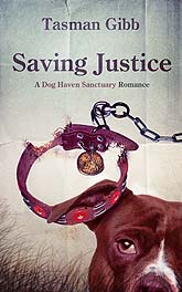 Saving Justice Ebook