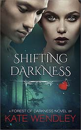Cover Design Sample Shifting Darkness 11