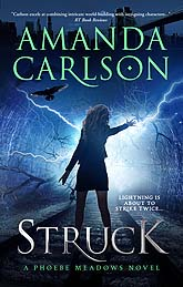 Struck ebook draft Sample Book Cover