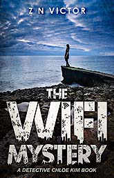 Book Cover Design Sample The WiFi Mystery 04e