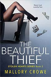 Book Cover Sample The Beautiful Thief 05