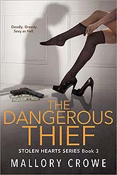 The Dangerous Thief 03 Book Cover Design Sample