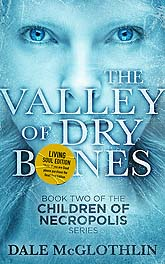 Valley11 B Cover