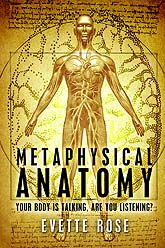 Cover Design Sample anatomy6