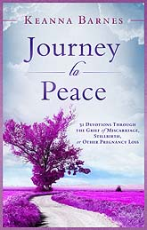 journey to peace 08B Book Cover